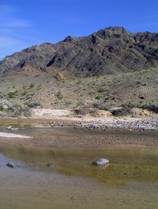 A slow, sluggish river moves against the backdrop of a brush desert and mountain.