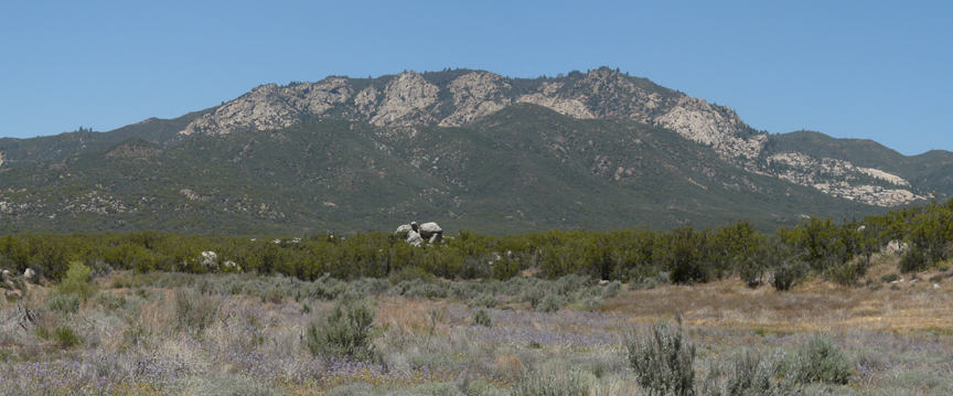 A sage and desert foreground gives way to dark brush, then way again to a great ridge of far off mountains.