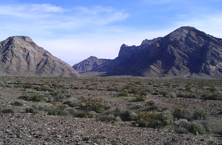 A low pass through two gloomy blue cliffs sets the backdrop for a foreground of pebbled desert sand and a few hardy plants.