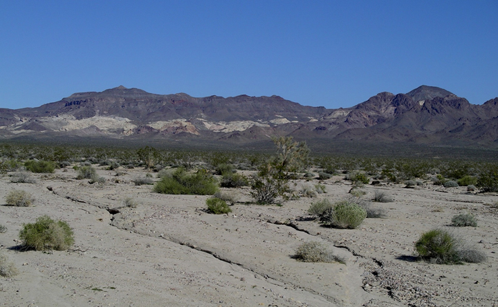 A desert with what looks like dry stream trails.  In the distance there are mountains.