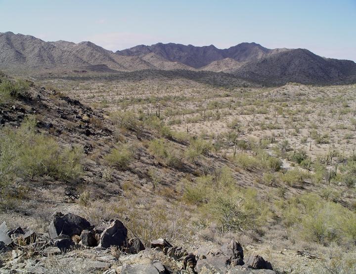 A hill tumbles down onto a cacti covered plain.  Mountains mark the horizon.
