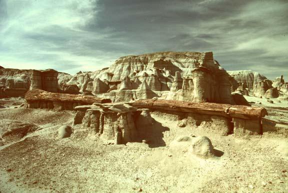 A long petrified logs sits amid hoodoos -- columnar, weathered, unusually-shaped rocks.