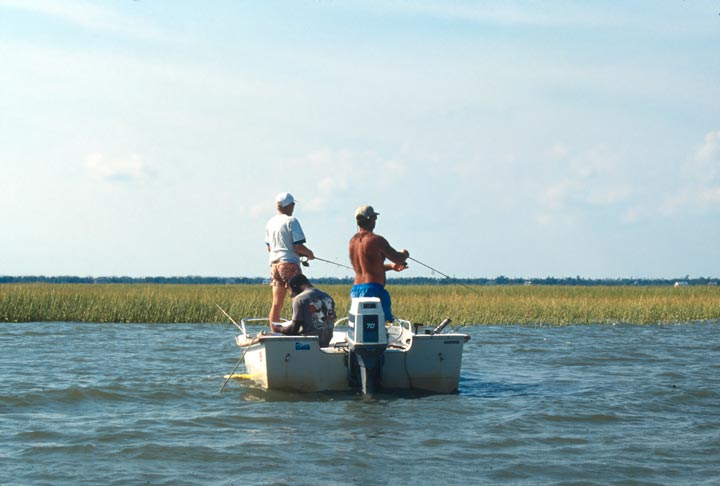 Three men fishing from a small open boat along the edge of a marshland.
