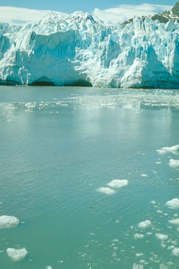 Looking up at the massive face of a large tidewater glacier, brash ice floating in the turquoise water below.