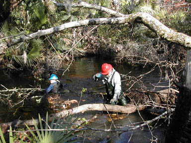 Two people wearing hard hats and waders, working in a water channel to clear fallen tree.
