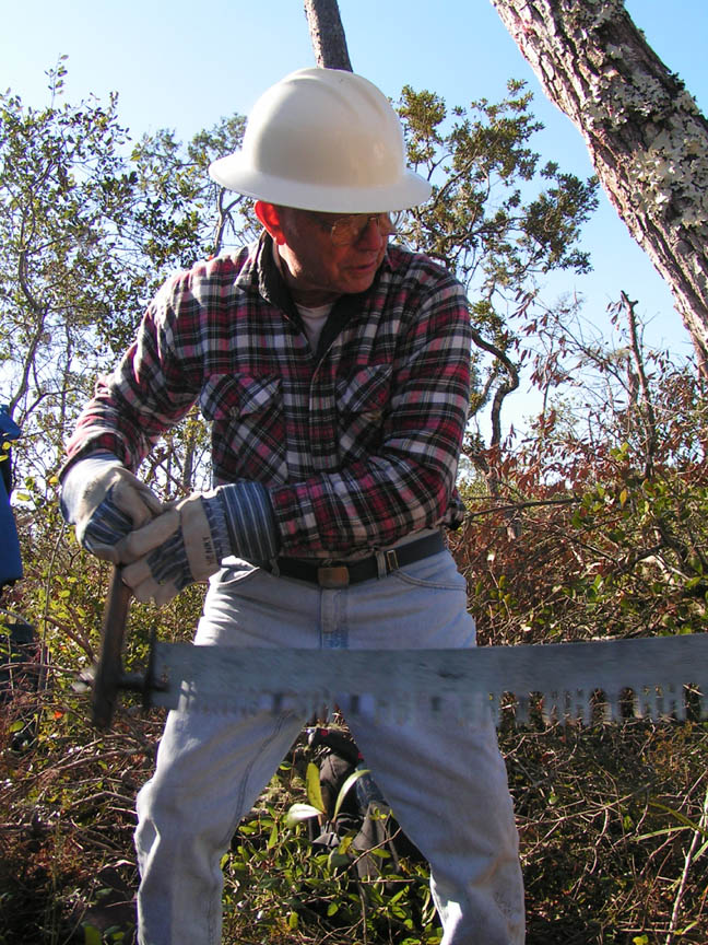 A man in a white hard hat, using a large hand saw to clear fallen trees.
