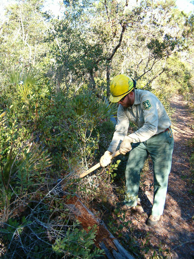 A agency staff member in a yellow hard hat, working with a hand tool to clear brush along a trail.