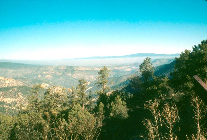 Looking down a forested slope, to a large valley below, filled with canyon drainages.
