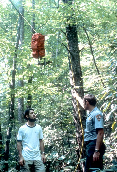 A park ranger demonstrating to a backpacker how to hang a food bag.