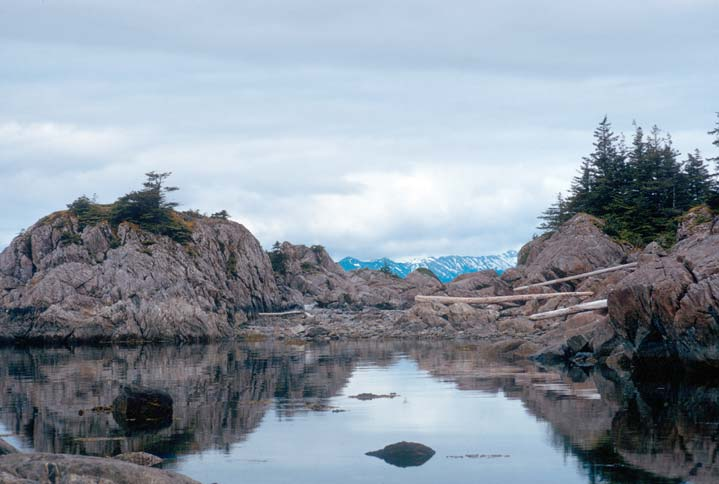A tranquil coastal scene of a large tide pool, surrounded by large rocky boulders and driftwood.