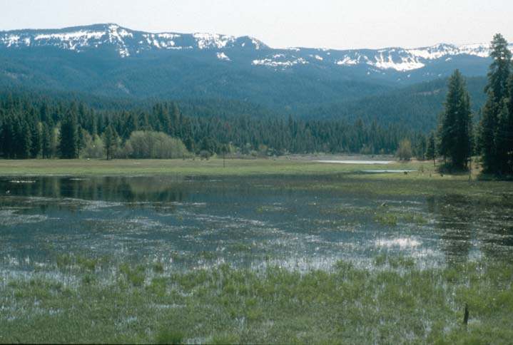 A large section of a marshy lake, looking up to a low mountain ridge beyond, laced with snow.