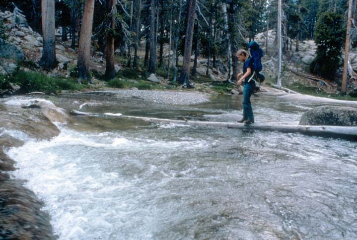 A backpacker carefully crossing a rushing stream on a low hanging log.