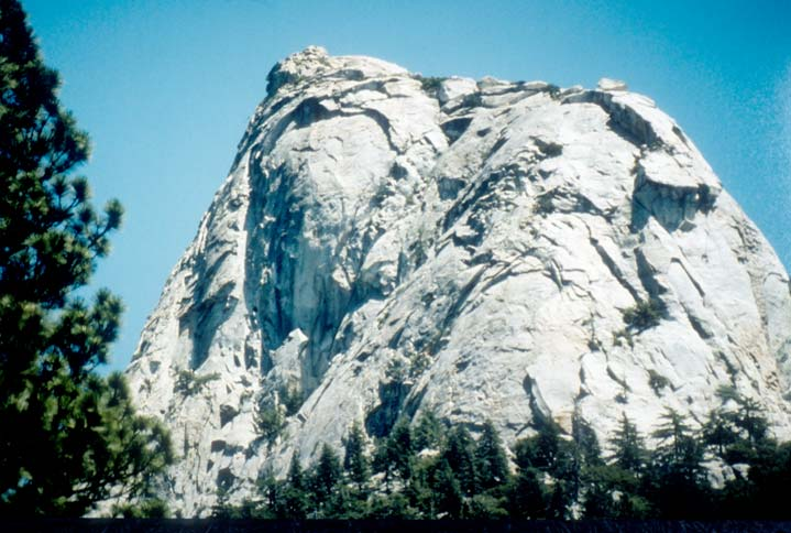 A massive round gray rock outcropping, towering high above the trees below.