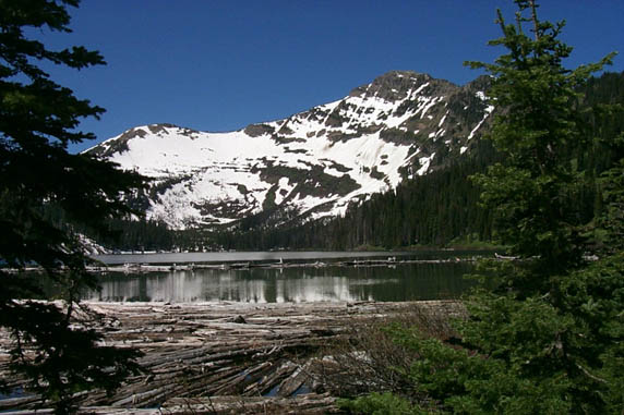 Looking through a frame of trees, to a large lake filled with logs in the foreground, and bordered by a tall snow-covered peak along the far shore.