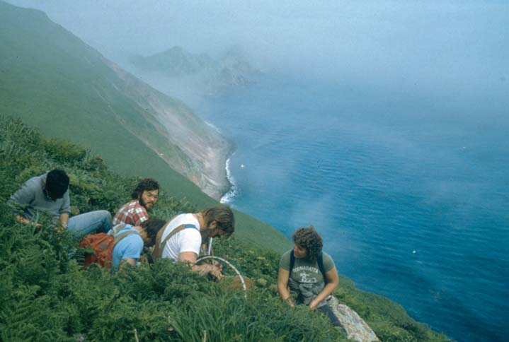 A small group of researchers sitting high on the slope of a coastal hill, surrounded by low green grass.