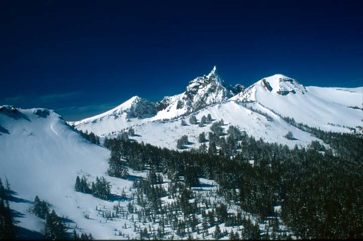 A stark landscape of jagged white snow covered peaks, sweeping down to forest trees in the valley below.