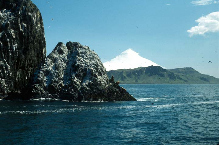 A rocky face jutting from the blue water, with seabirds circling above. A massive white conical shape rises in the far distance, behind the green coast.