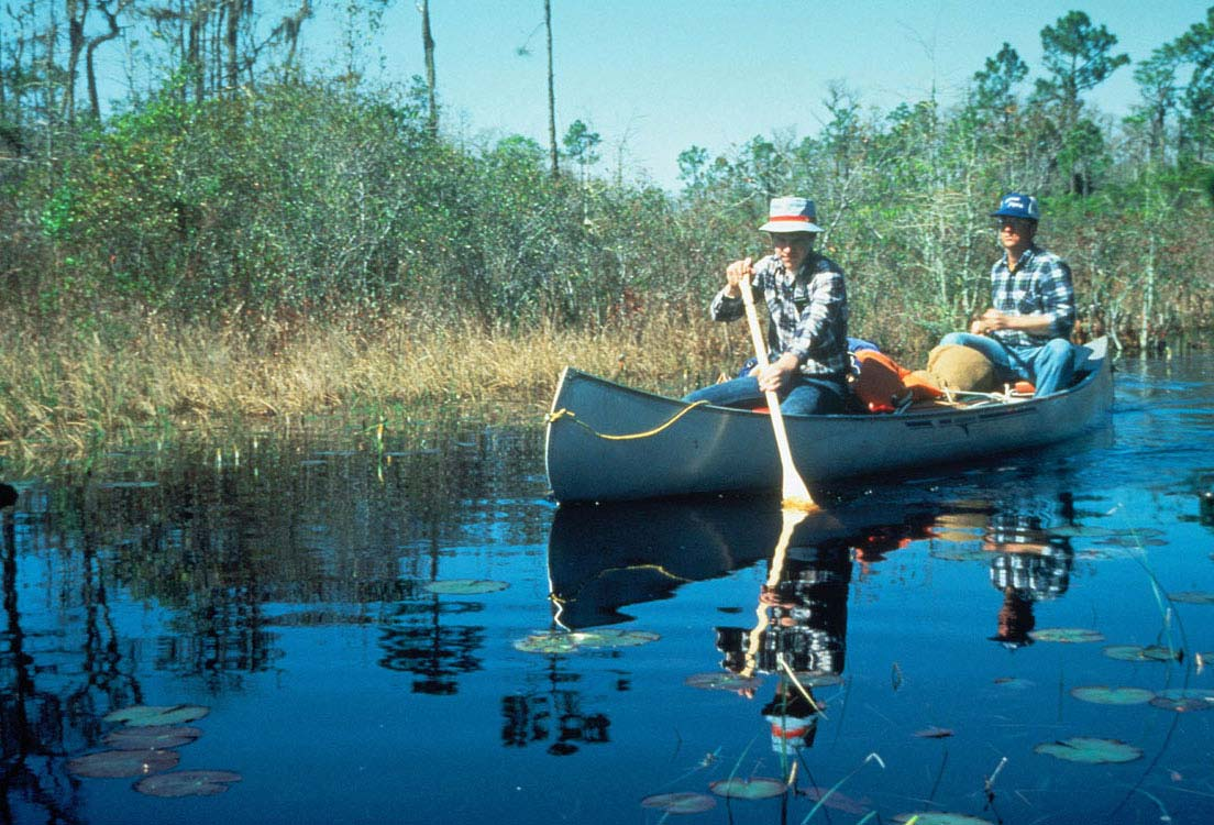 Two men paddle a silver kayak down a narrow waterway, spotted with Lilly pads.