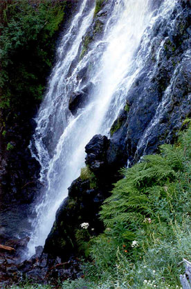 A steep rocky waterfall, surrounded by dense green foliage.