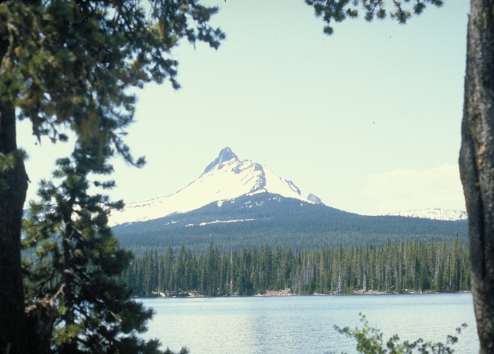 The forest stretches from the edge of the lake to the foothills of a glorious snowy peak.