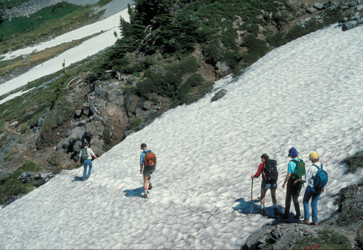 Hikers traverse their way down a snowy hill.