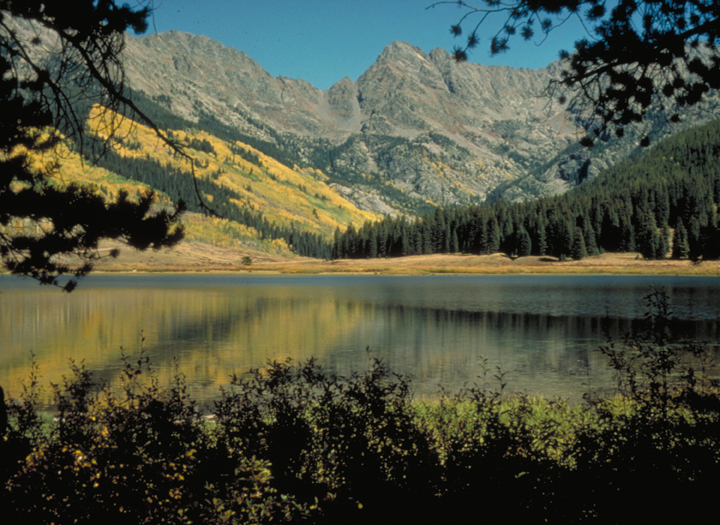The lake lies in the shadow of a gray stone peaks. The green trees near the shore give way to a hillside of golden larches.