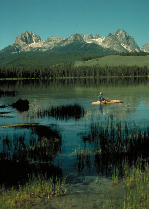 A kayaker paddles along a reedy lakeshore.  Far off there is a ridge of mountains.
