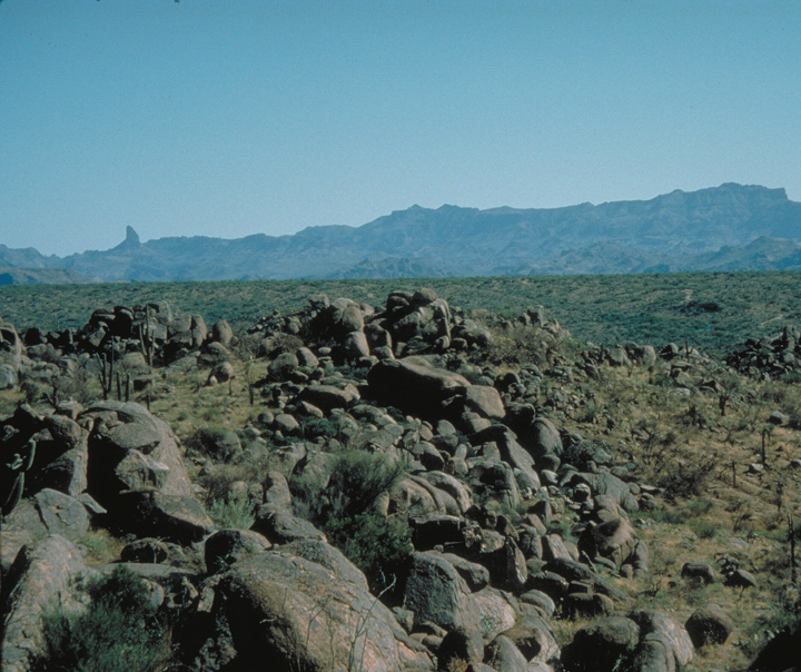 A series of rocks are strewn across the arid sandy desert floor along with low plants.