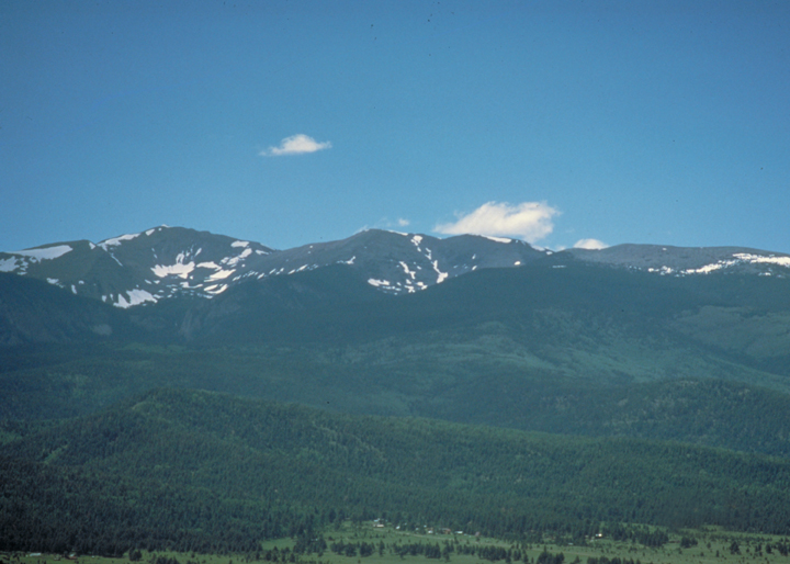 A forested foreground gives way to a line of low, rounded snow scattered mountains.