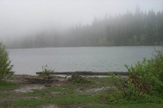 A dreary scene looking out over the shore of a small mist-covered lake, during a heavy rain.