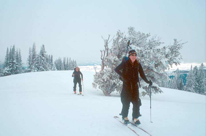 Two skiers surrounded by a white landscape of snow-covered trees, under an overcast sky.
