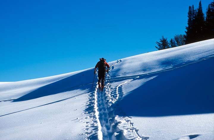 A single skier winding through an open landscape along a narrow trail in the snow, surrounded by harsh blue shadows.