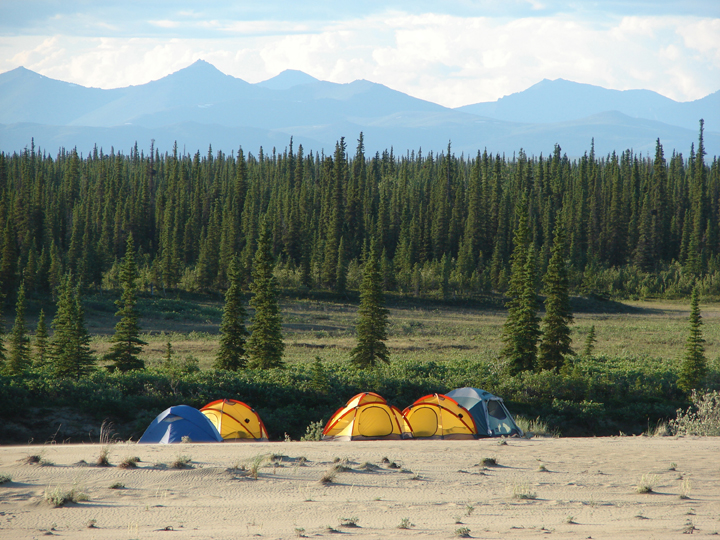 Two blue tents and three yellow tents rest on the edge of a sandy area, a great pine forest expanding beyond.  The mountains in the distance are hazy.