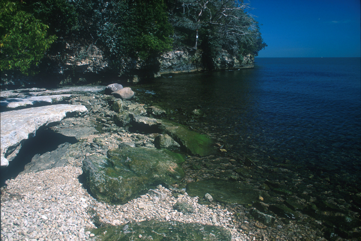 A secluded, rocky bay can be seen.  The blue waters are clear enough to see the stones beneath the water, and the trees are edged along the shore like primeval sentinels.