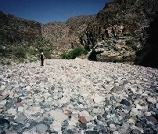 Photograph taken in  the Rawhide Mountains Wilderness