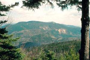 Photograph taken in  the Sandwich Range Wilderness