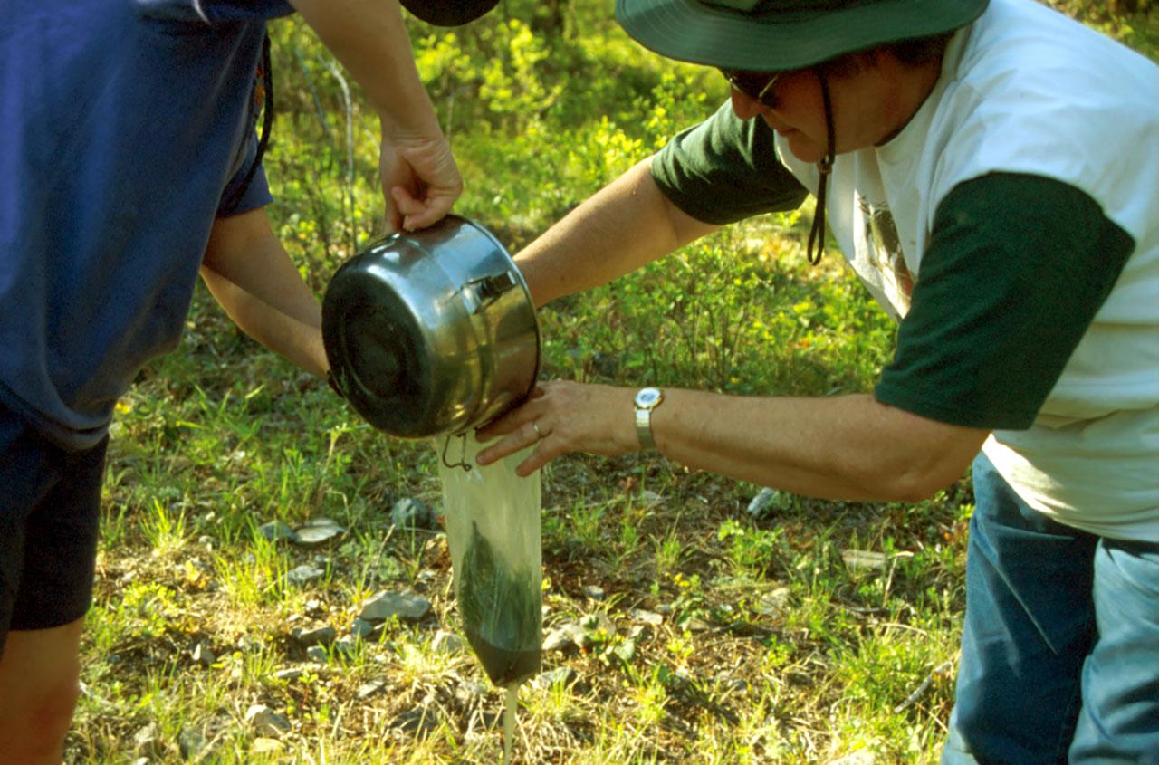 Draining graywater