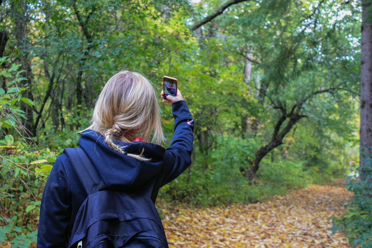 Girl with a cell phone in the forest