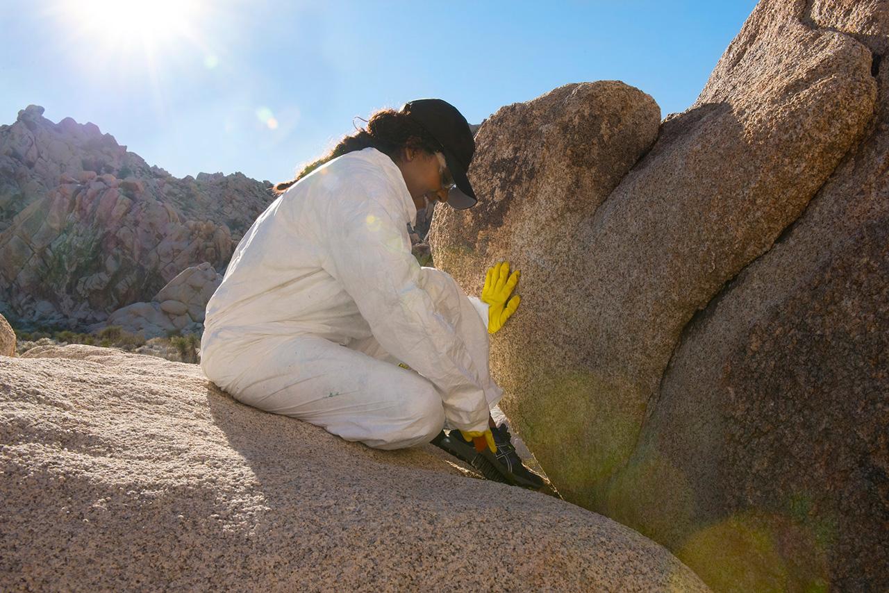 Woman scrubbing graffiti off a rock
