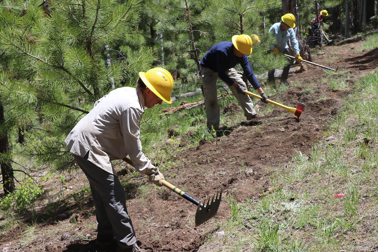 People in hardhats digging trail tread.