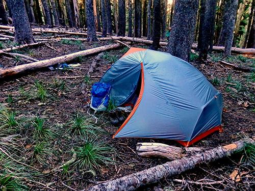 Dispersed campsite